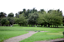 The long uninterrupted luscious green lawn and tree views from the Central London Golf Centre a friendly and relaxed London wedding venue in Wandsworth